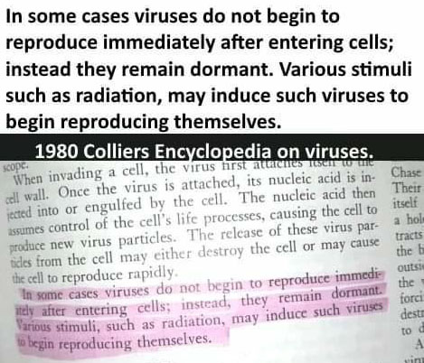do viruses respond to their environment